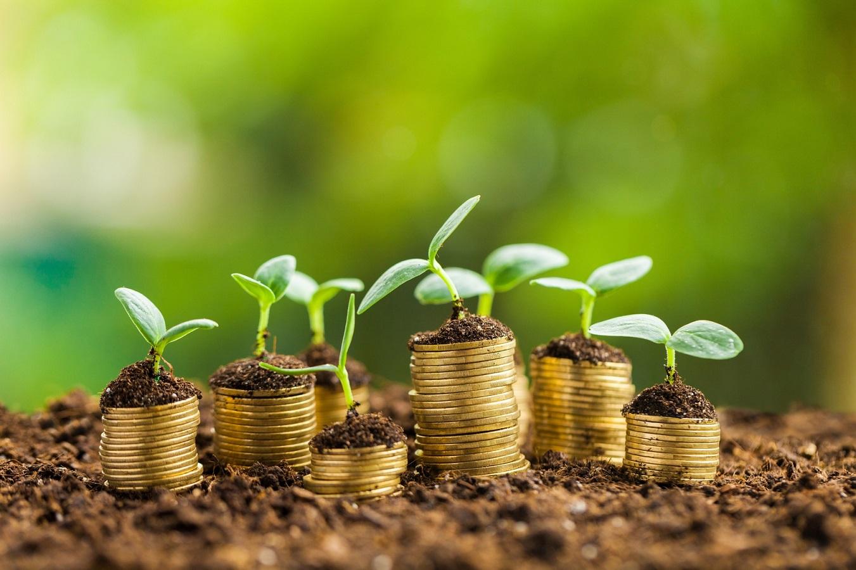 سرمایه گذاری خطرپذير چیست؟