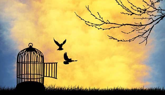 گفتاری در باب آزادی (قسمت اول)