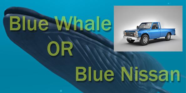 نهنگ آبی یا نیسان آبی؟