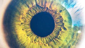 همه چیز درباره لنزهای چشمی و لنز رنگی