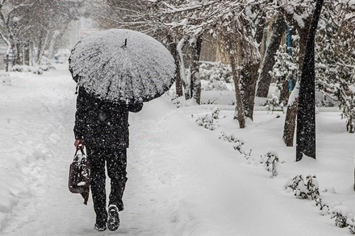 برف اما برف..