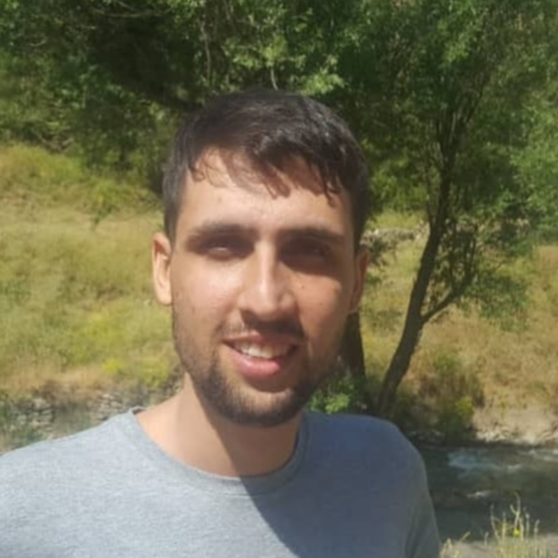 سید عماد رضوی
