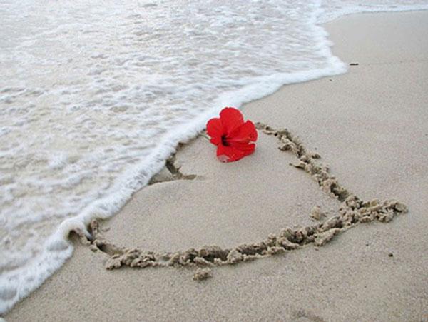 داستان عاشقانه اهدای قلب
