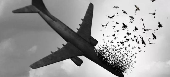 Condolences for Victims of Ukrainian International Airlines flight 752