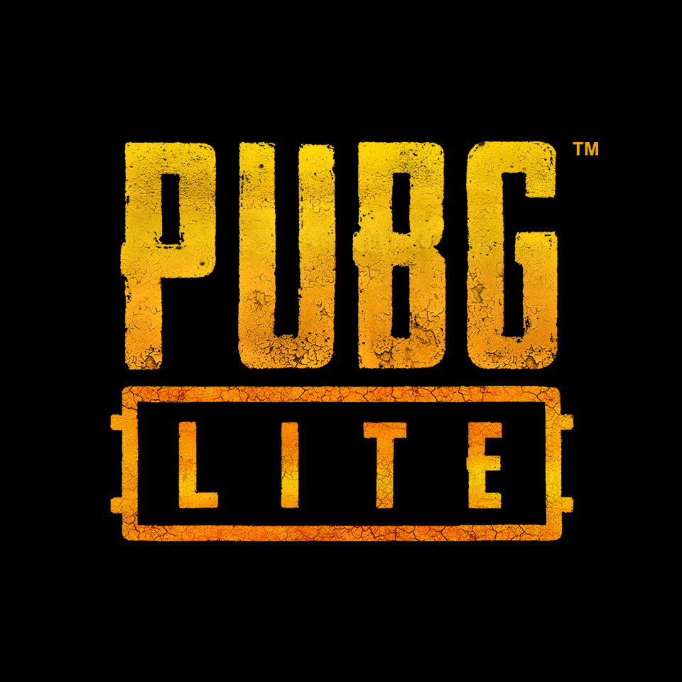 راهنما اجرا بازی PUBG Lite