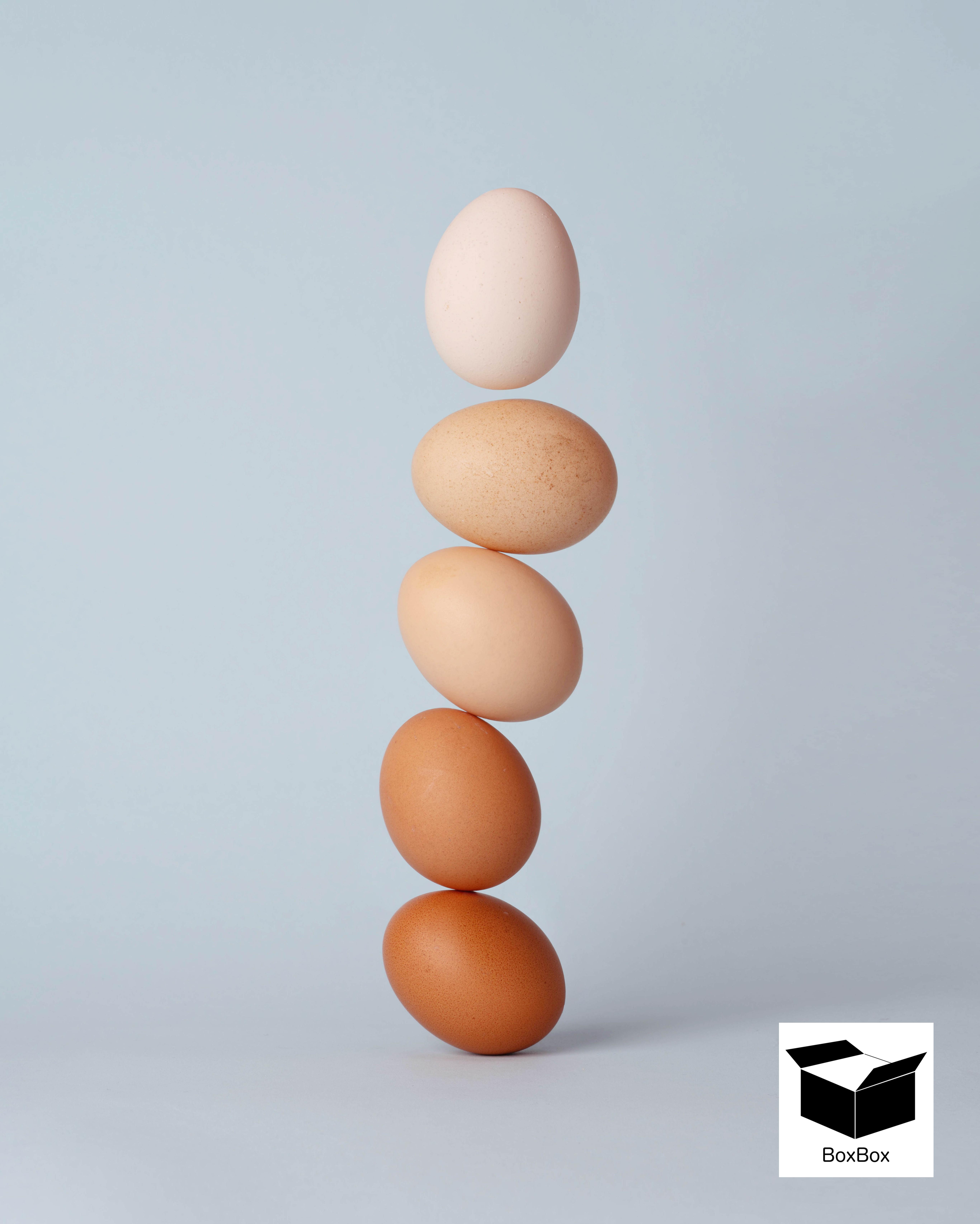 تفاوت تخم مرغ قهوه ای و سفید در چیست ؟