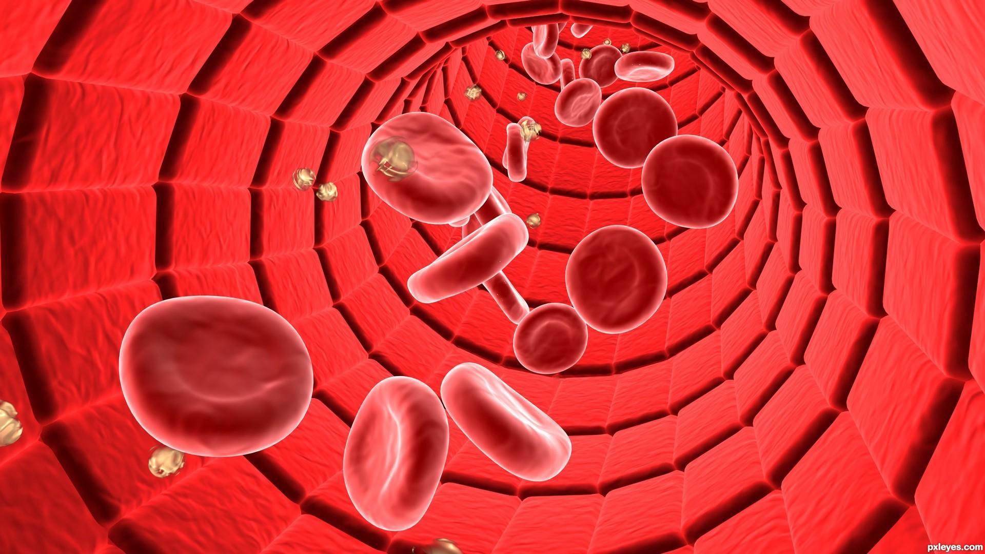 شبیه سازی جریان خون با استفاده از یادگیری عمیق (Deep Learning)