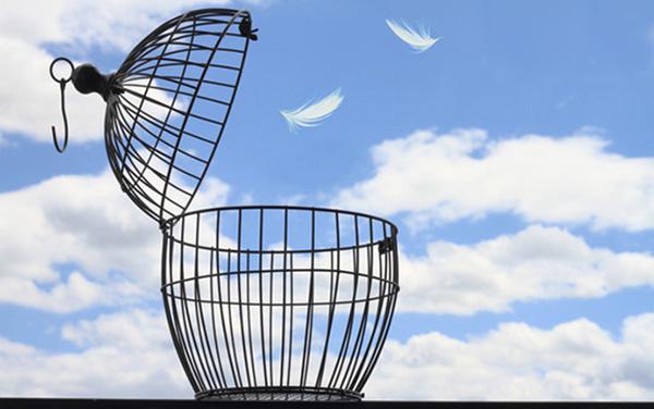 چرا برای آزاد بودن باید 99% مردم جهان را از بین ببریم؟