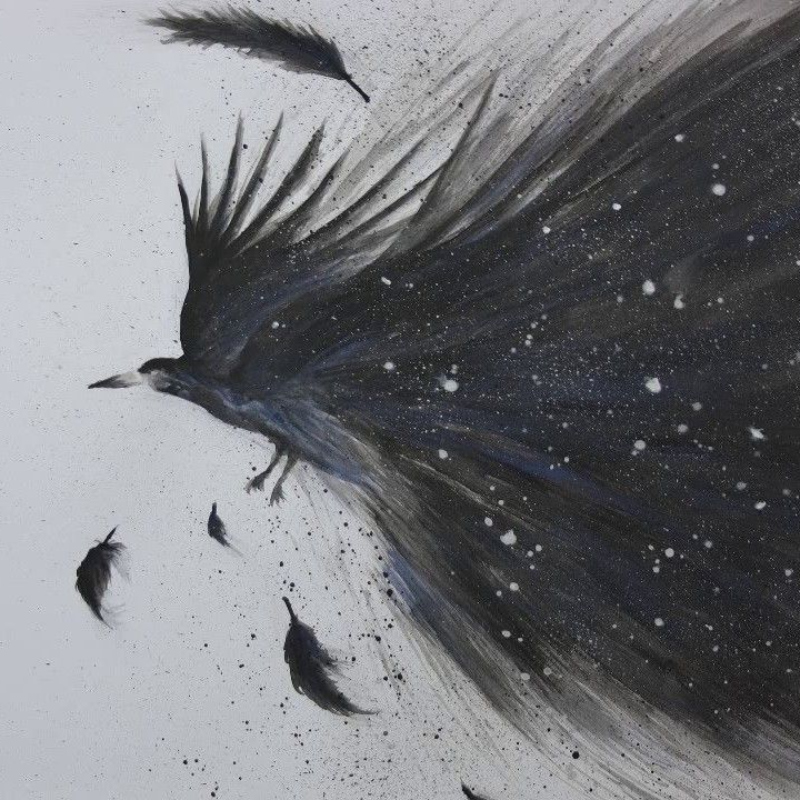 :Raven
