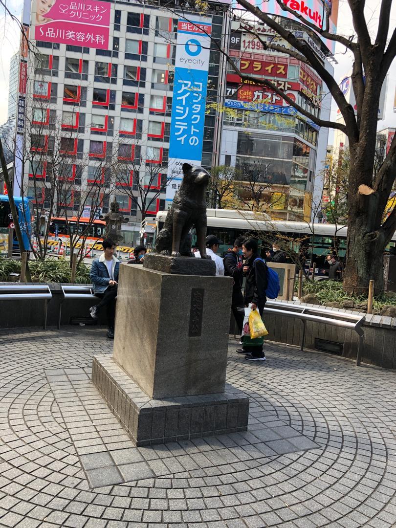 مجسمه هاچیکو (Hachiko)