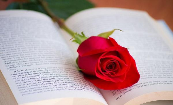 نقش رمان های عاشقانه در زندگی انسان