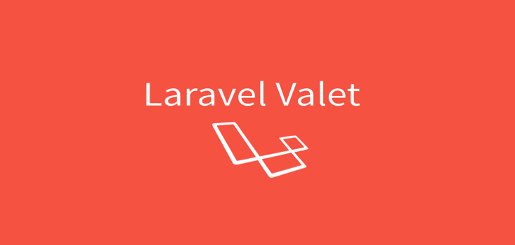 لاراول Valet
