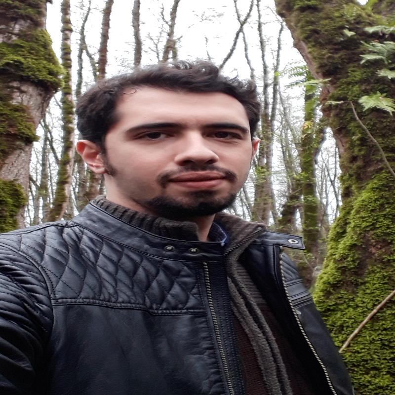 Ehsan Hesam