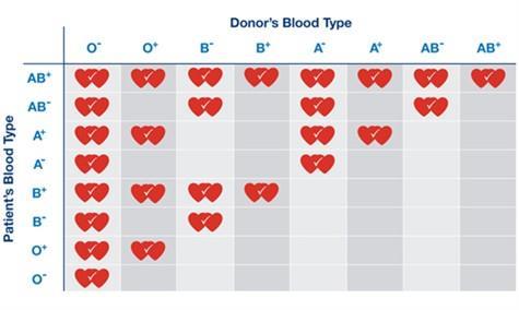 چه گروه خونی برای ازدواج مناسب نیست