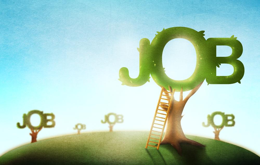 7 شغلی با درآمد بالا که با استارتاپ ها کار می کنند