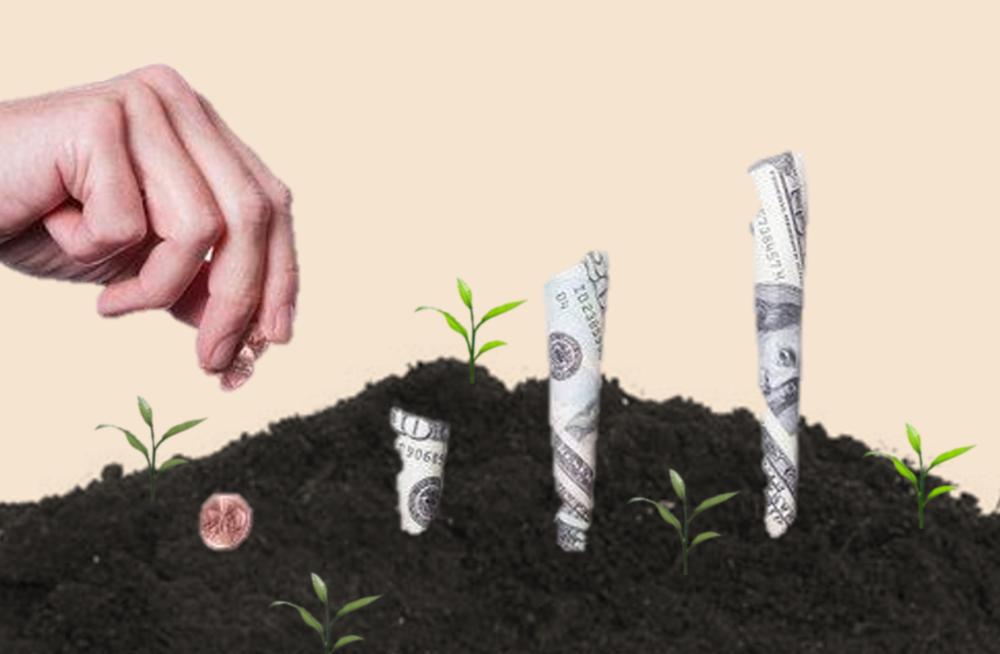 پیدا کردن سرمایهگذار مهمترین بخش راهاندازی استارتاپ