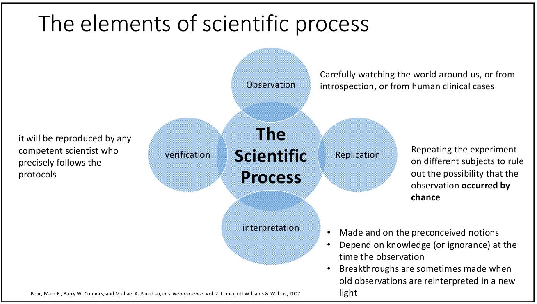 چرخه علمی چگونه عمل میکند؟