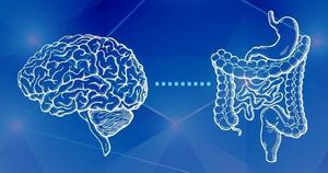 آیا رژیم غذایی مناسب به عملکرد بهتر مغز کمک می کند؟