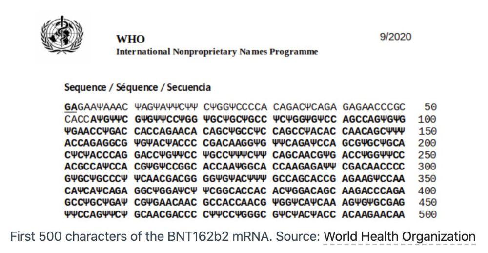500 حرف اول mRNA BNT162b2. منبع: سازمان بهداشت جهانی