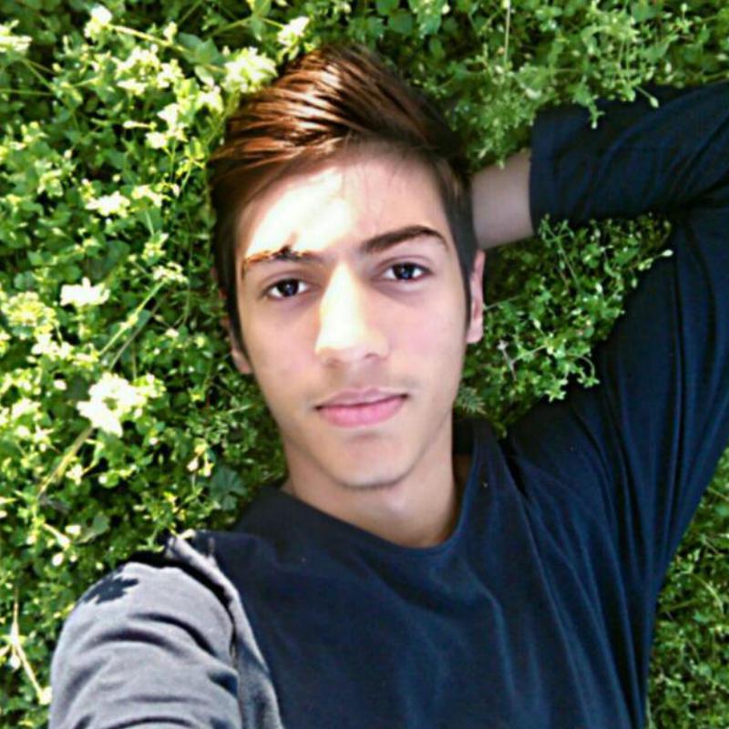 M_Hosseini80