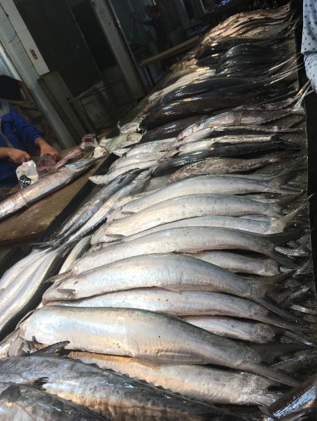 بازار ماهی فروشا
