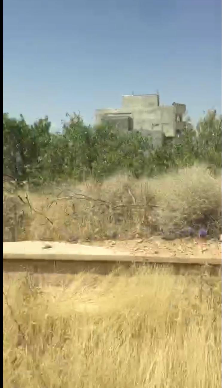 تخریب بیرحمانه باغ سروک یاسوج