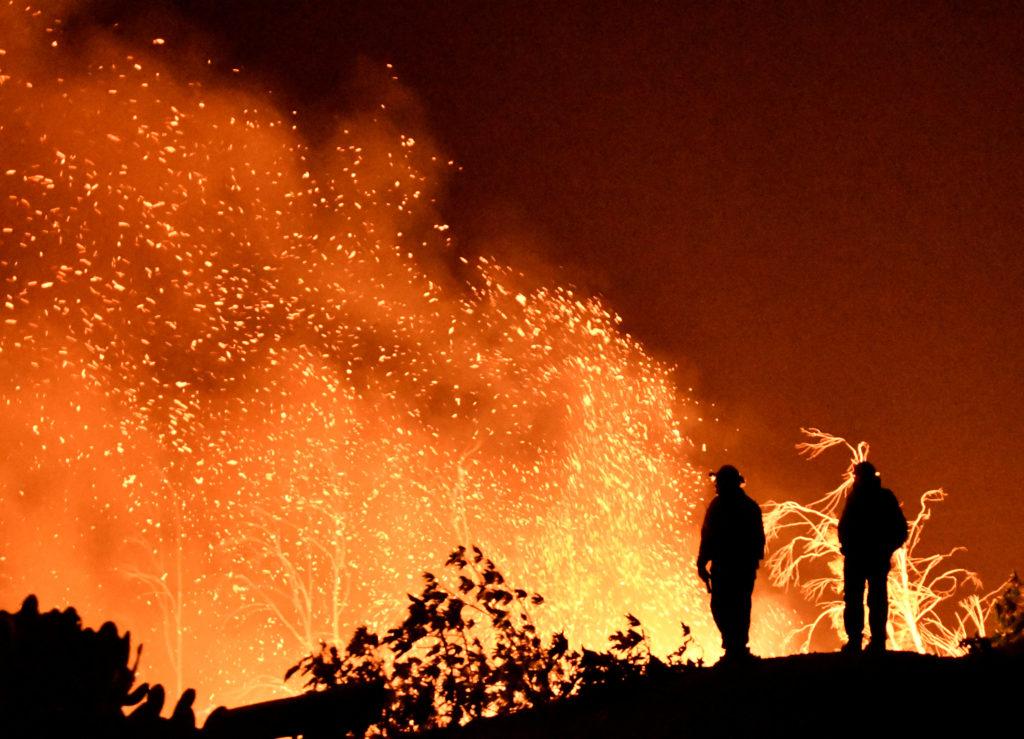 آتشی که جنگل نوپای استارتاپی ایران را تهدید می کند