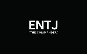 چه کسب و کاری مناسب شماست؟ اگر یک ENTJ هستید.