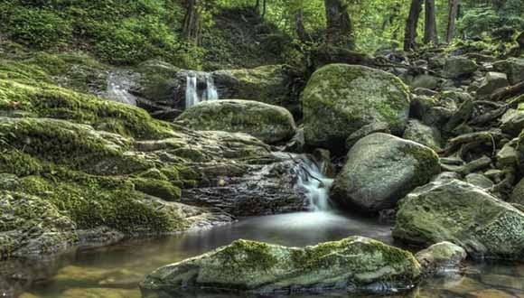 آبشار لونک ، تو آن بلای قشنگی که آمدی به سرم