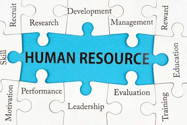 منابع انسانی، قطعه گم شده سازمان ها