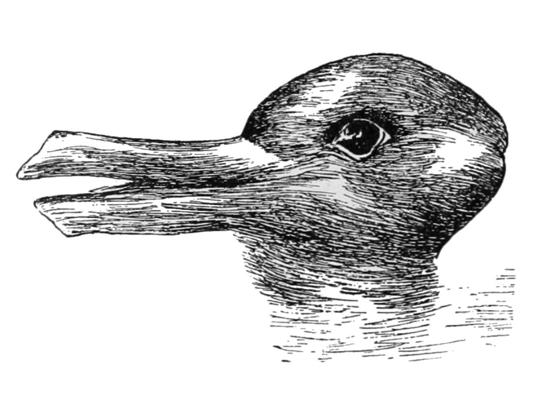 اردک یا خرگوش؟ مسئله این است...