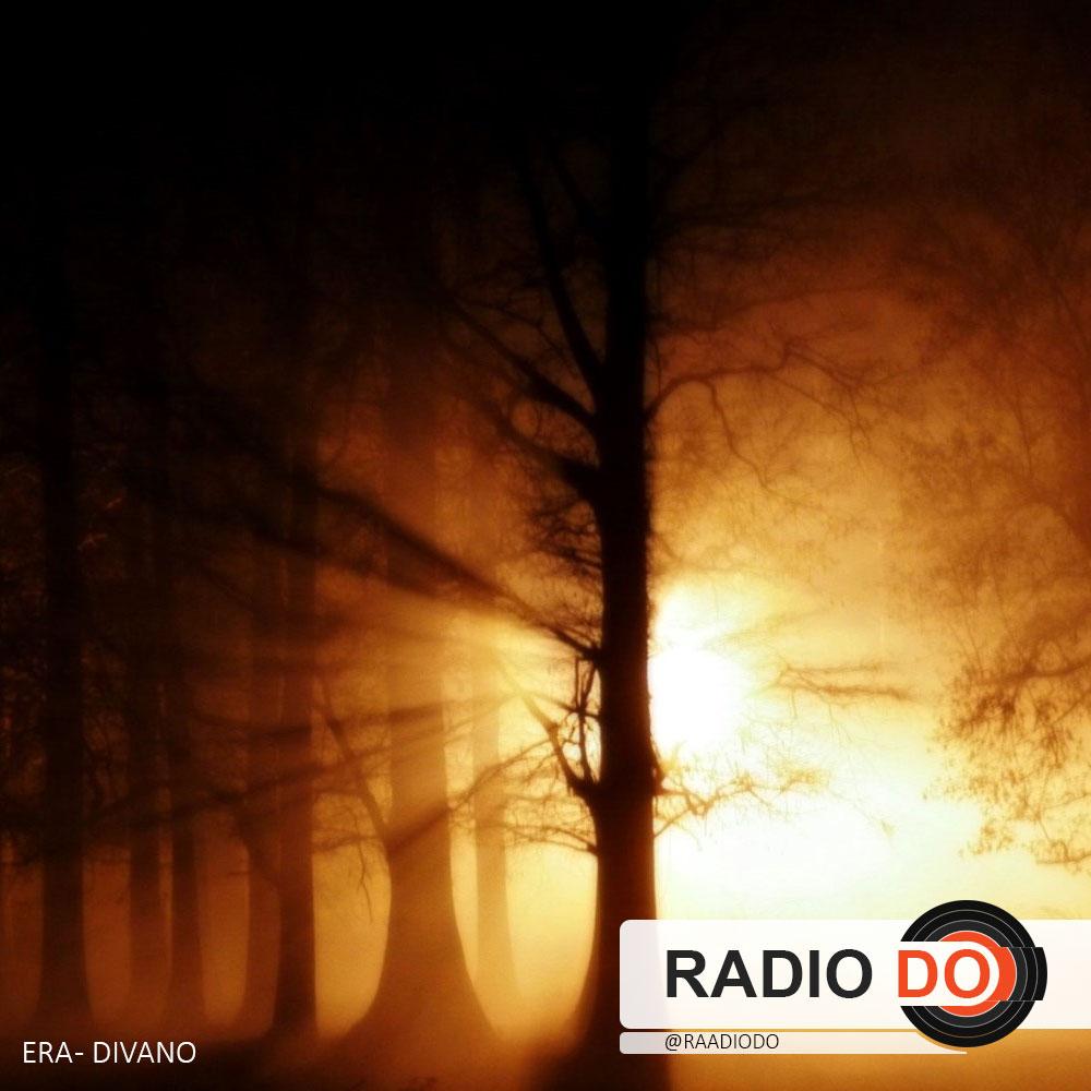 گذر از شاخه ها در مه