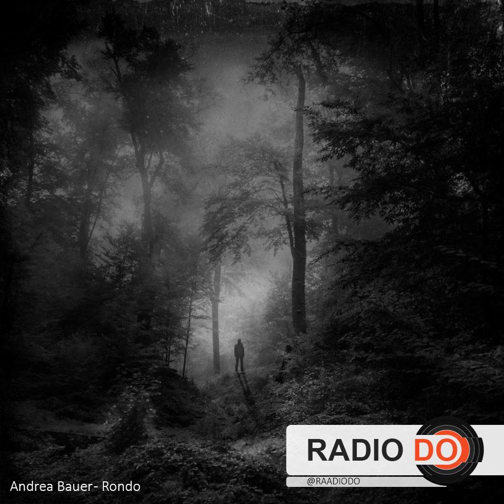 سرگردان در جنگل نیمه تاریک