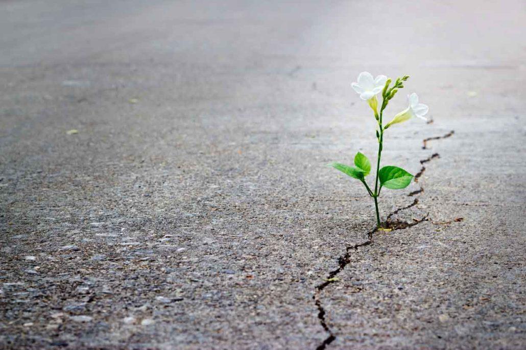 تأثیر متقابل امید فردی و اجتماعی