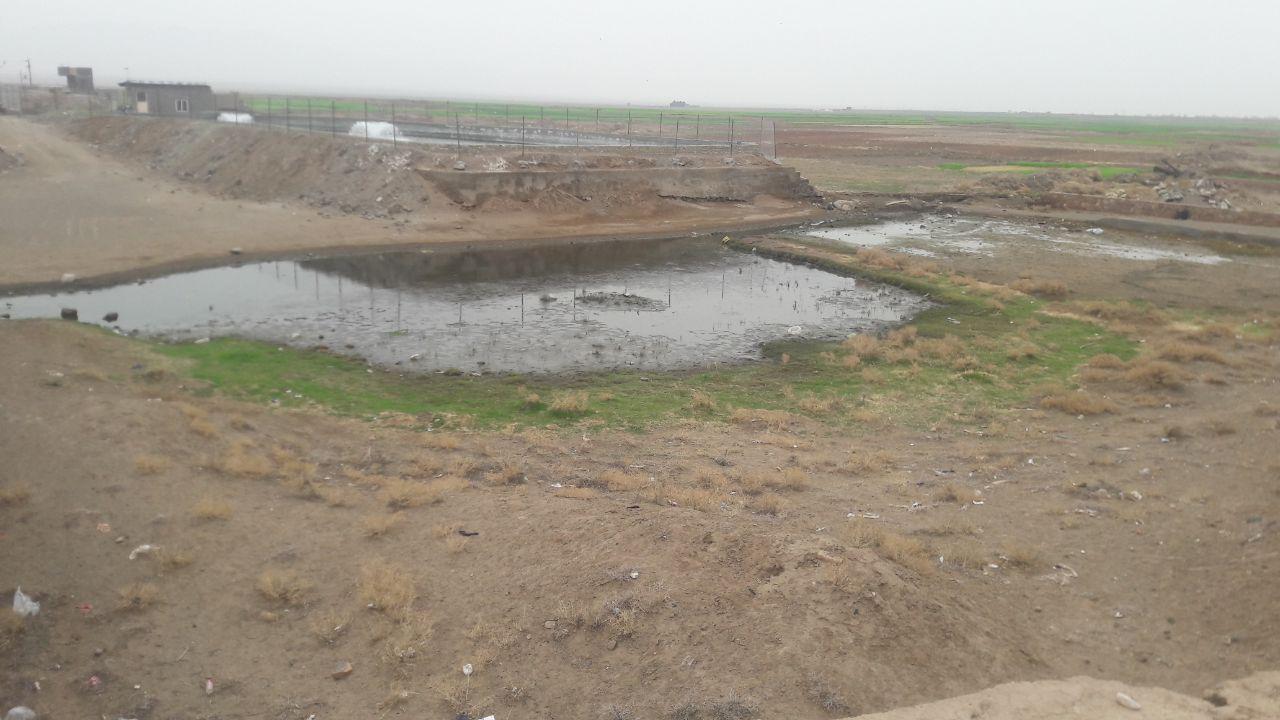 استخر آب قنات در کنار استخر آب چاه که برای پرورش  ماهی و اشتغال زایی ساخته شده است