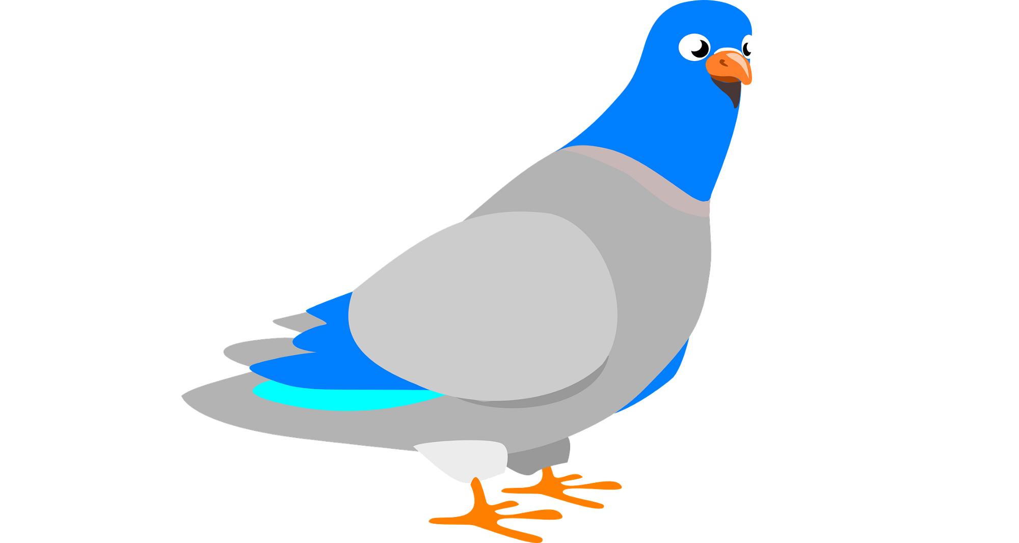 آشنایی با HTTPS به زبان ساده به روش کبوتر نامه بر