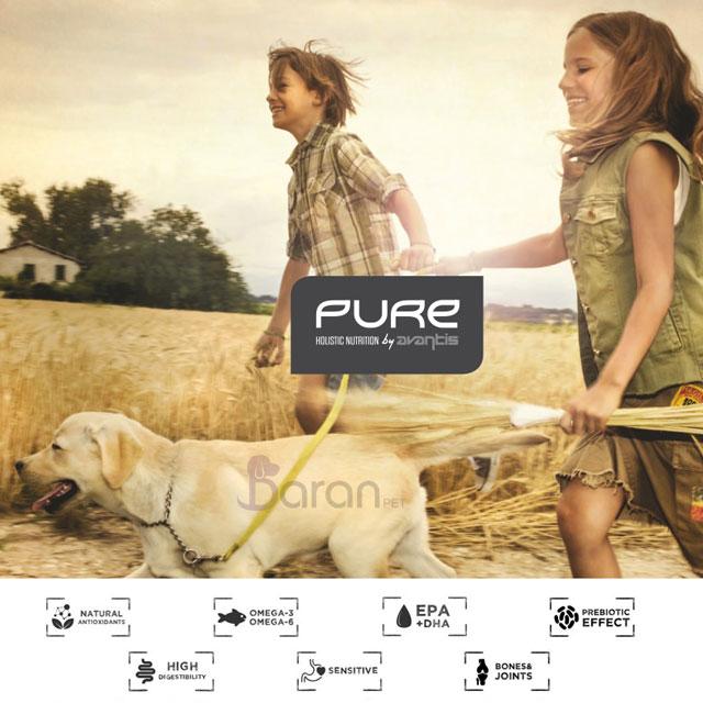 معرفی برند پیور (Pure)
