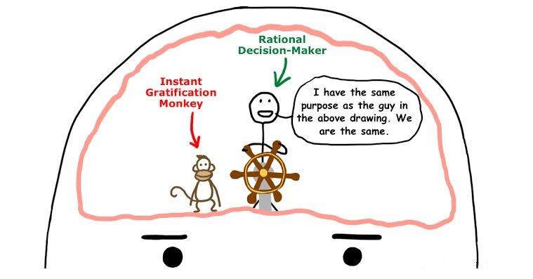 مغز ما آدمای به تعویق انداز - عکس از waitbutwhy.com