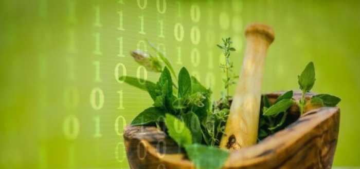 پزشکی سنتی به منزله یک مجموعه داده