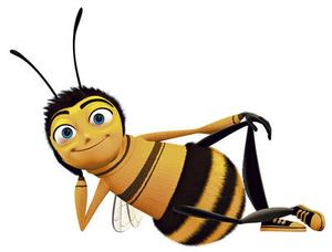 امریکا و حمله  نیش زنبور