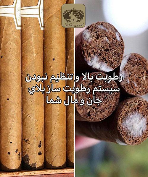 عوارض رطوبت زیاد برای سیگار برگ :