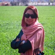 Neda Kashi