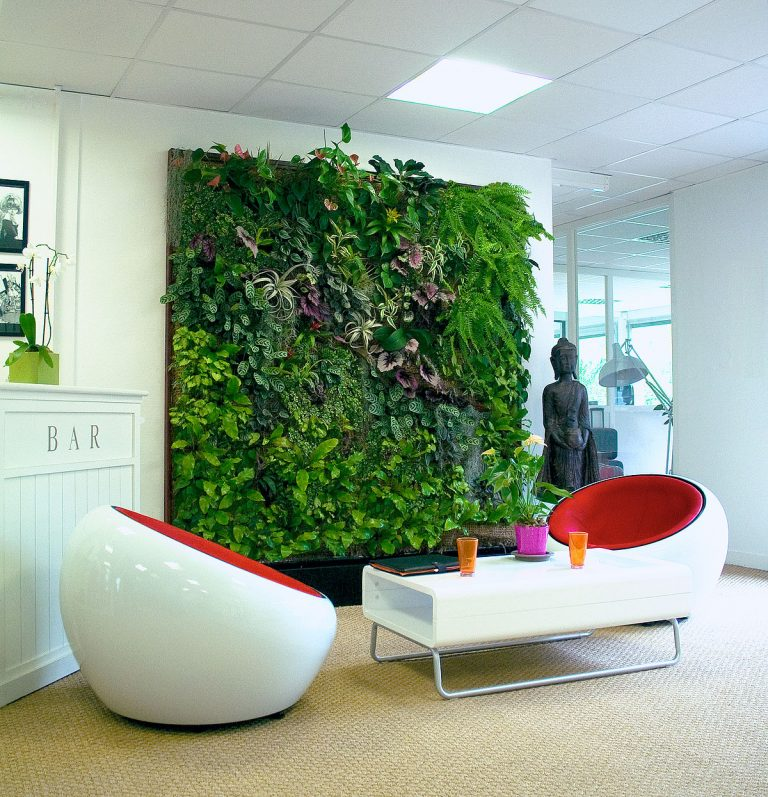 طراحی دیوار سبز چگونه است؟