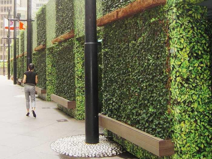 طبقه بندی و تعریف دیوار سبز (1)