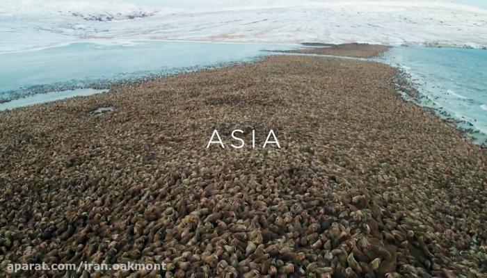 هفت جهان، یک سیاره، قاره آسیا
