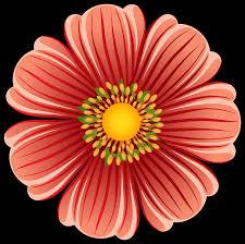 گل درشت اول
