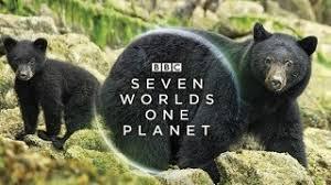 هفت جهان، یک سیاره، آمریکای شمالی