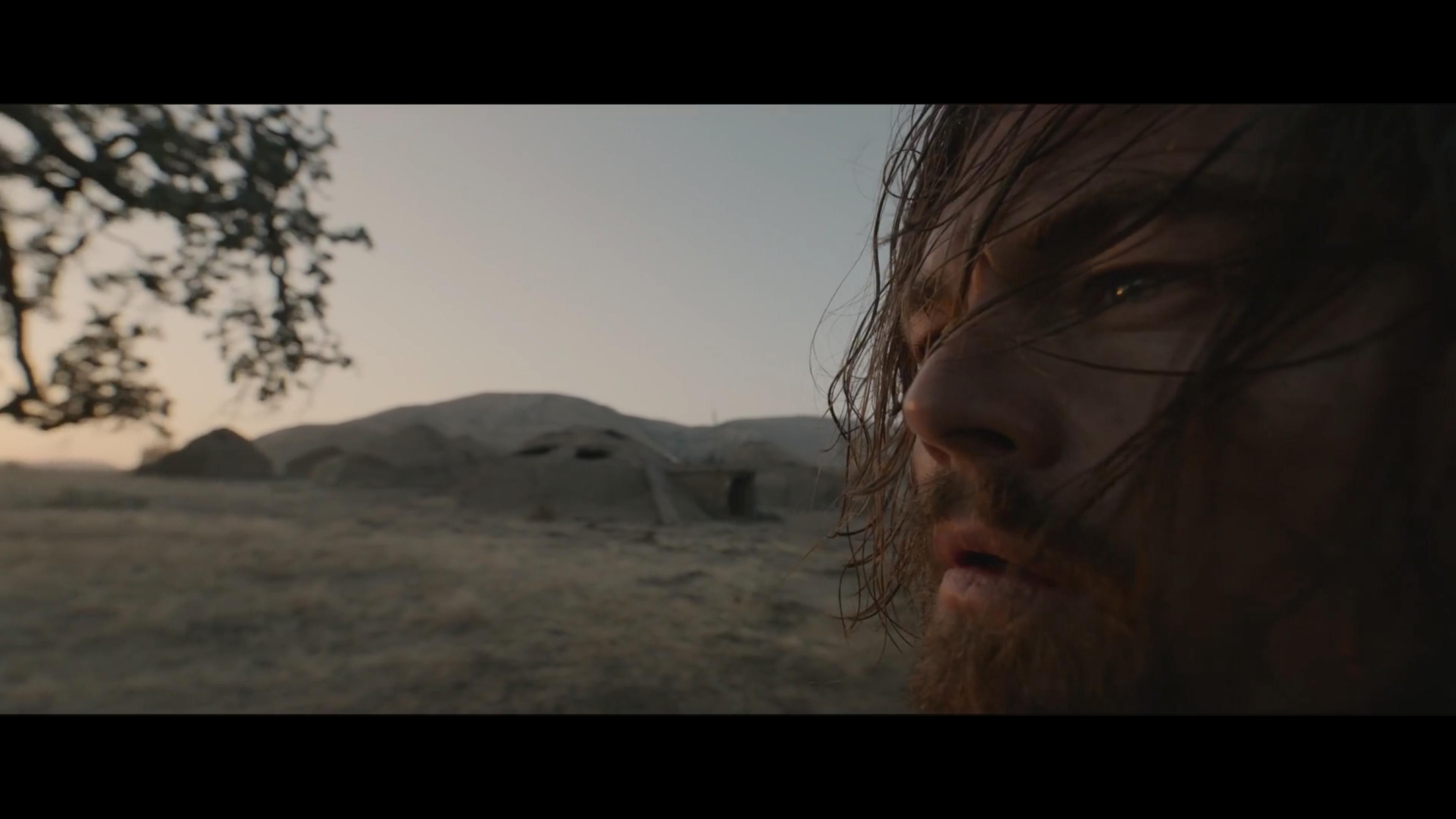 از مرگ بازگشته (۲۰۱۵)؛ این لنز واید زیبا