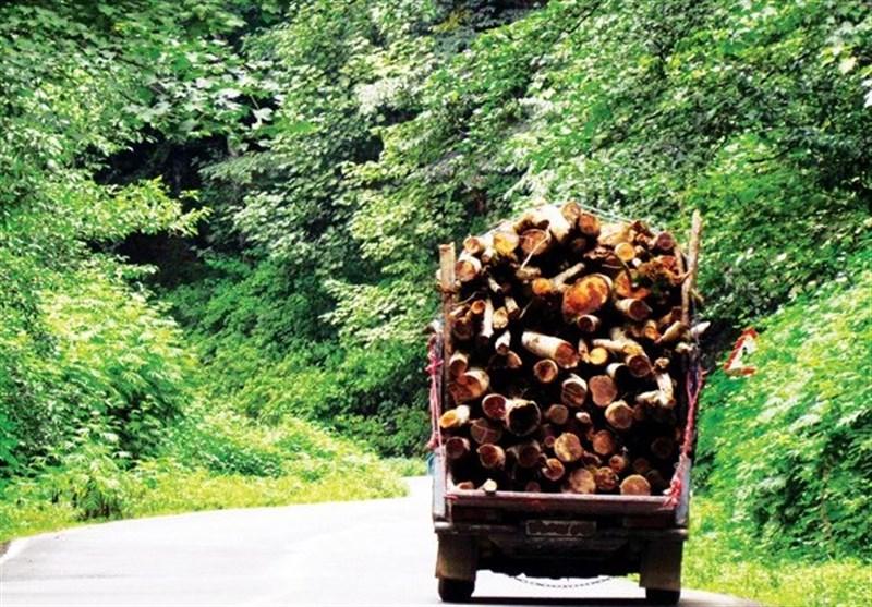 دیگر هیچ درختی برای ساخت در قطع نخواهد شد.