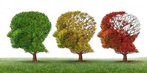 داستان آلزایمر مادربزرگم و راه حل پیشگیری از آلزایمر